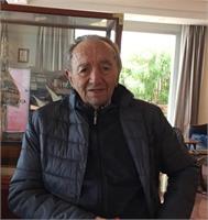 Aldo Vianesi