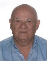 Ferdinando Bertolini