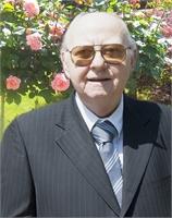 Luciano De Grandi