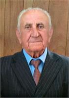 Domenico Bosio