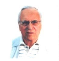 Luciano Pietro Torello