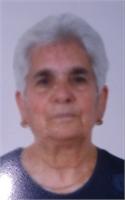 Margherita Scocozza