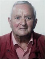 Italo Boselli