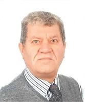 Walter Meneghel