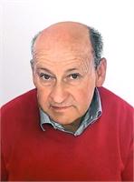 Domenico Bongioanni
