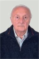 Gianni Bozzola