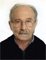 Dario Feltrin