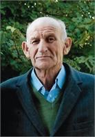 Dino Bontadini