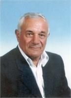 Luigi Bosi