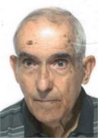 Giorgio Sulis