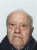 Luigi Fossati