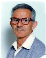 Venerino Vidale