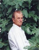 Giovanni Morello