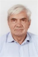 LUIGI BERTANI