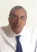 Domenico Solmonese