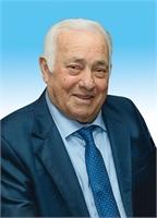 Raffaele Vergara