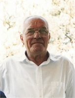Giovanni Alpegiani