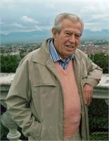 Pietro Scattolin