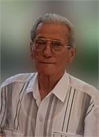 Gino Rotatori