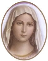ONELIA BRAVI