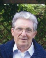 Alfredo Romagnoli