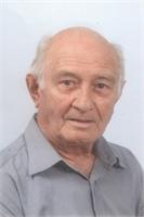 MARIO VANZAGHI
