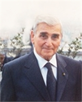Domenico Malatesta (TV)