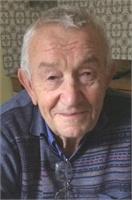 Angelo Forlani